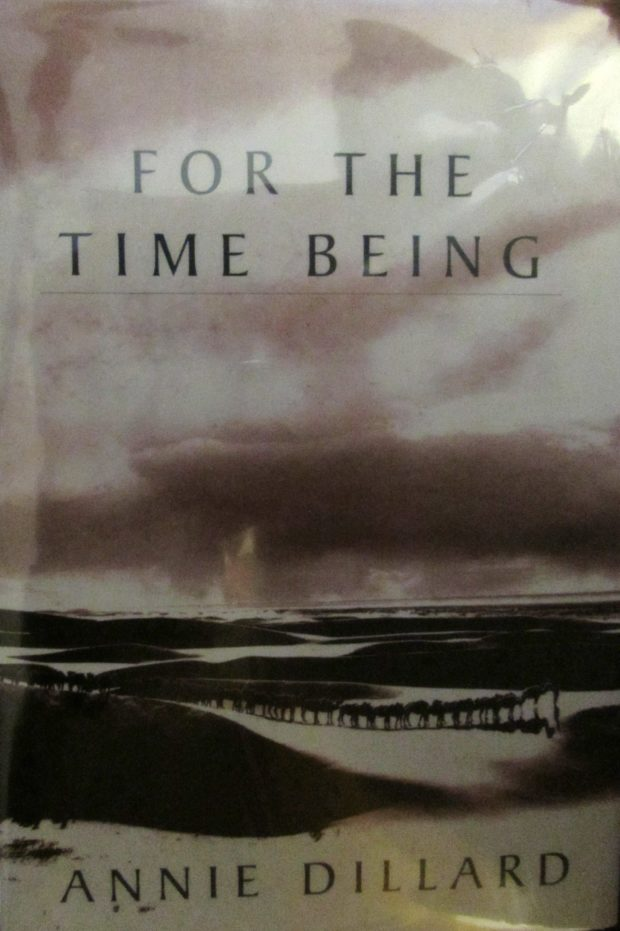 For the Time Being by Ann Dillard